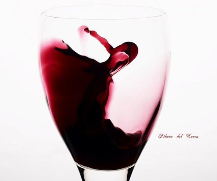 Vinos Tintos: RESTAURANTE de Restaurante Arrocería Puerta de Atocha