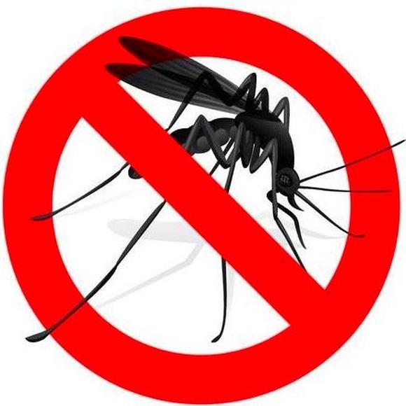 Stop mosquitos, tipos de mosquiteras.
