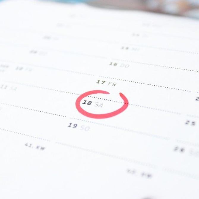 El calendario de vacunación de los perros