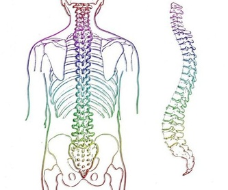 Fisioterapia traumatológica: Tratamientos de Fisioterapia T-Cuida