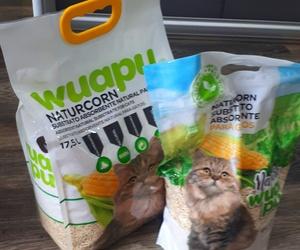 Naturcorn substrato absorbente para gatos