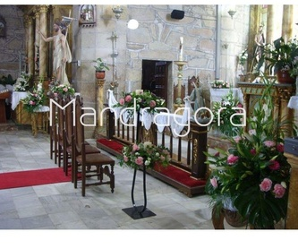 Centros: Productos de Mandrágora Floristería