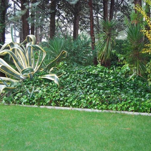 Residencia terapéutica en la Sierra de Madrid