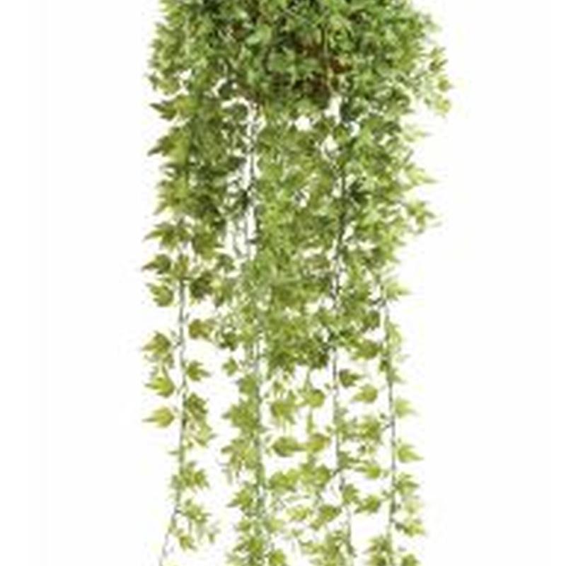 Planta decorativa techo 10.815C: ¿Qué hacemos? de Ches Pa, S.L.