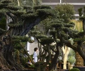 Feria Valencia volverá a llenarse en febrero por primera vez desde 2006