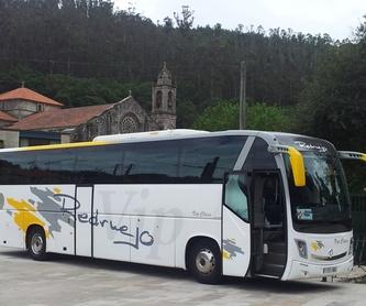 MINIBUSES ESCOLARES: Servicios de autocar de Autocares Redruejo