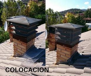 Colocación de mallas anti-nido