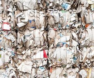 Los importantes beneficios del reciclaje