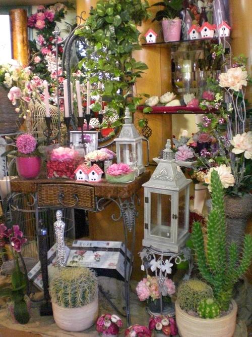 Todo en plantas y detalles de decoración