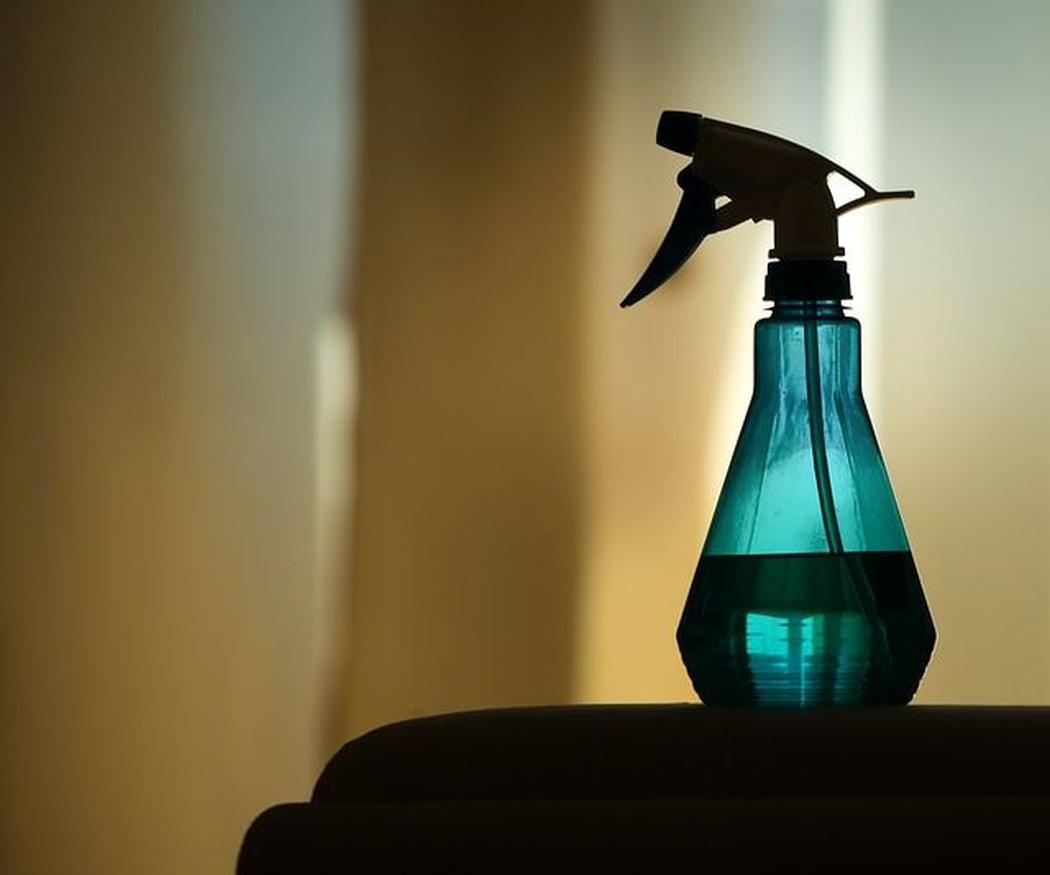 Asegúrate de que tu empresa de limpieza usa productos con la etiqueta Ecolabel
