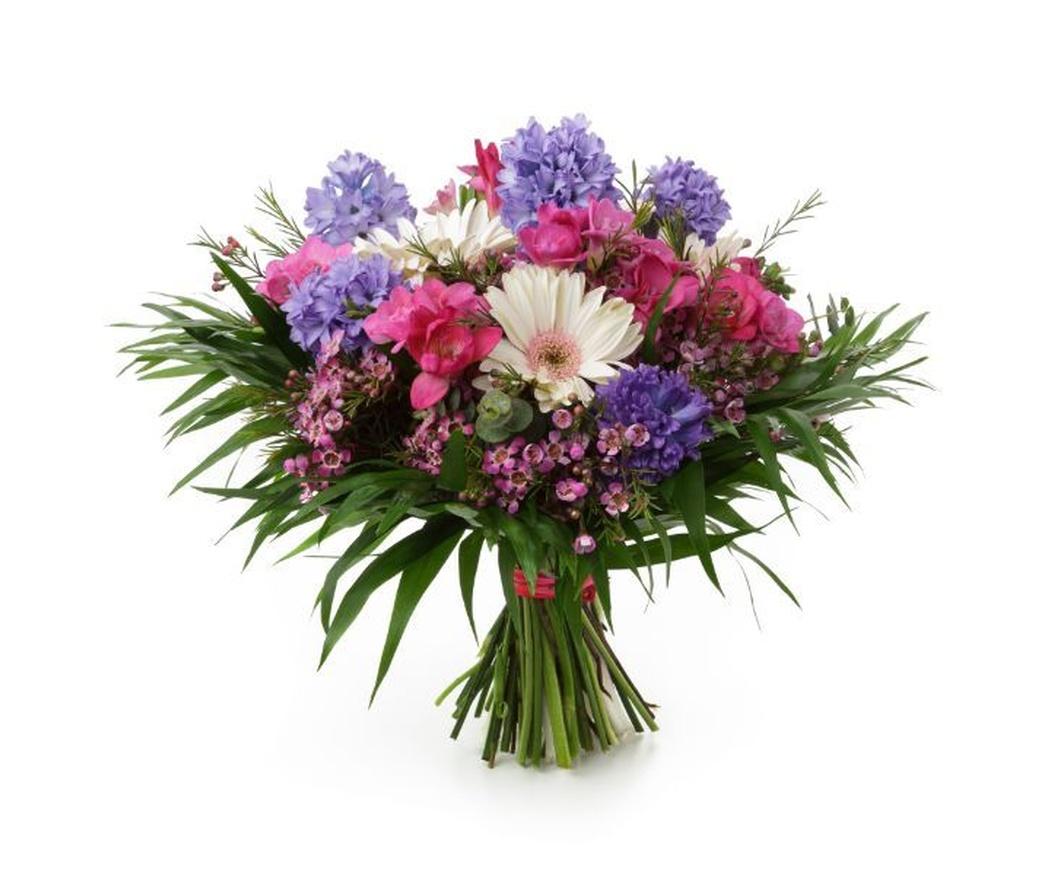 Algunas de las flores silvestres más bellas