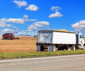Transportes de cereales a granel