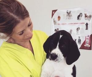 Presentación nueva veterinaria TOT EXOTICS