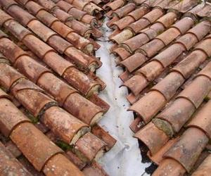 Empresa de rehabilitación de tejados en Bizkaia