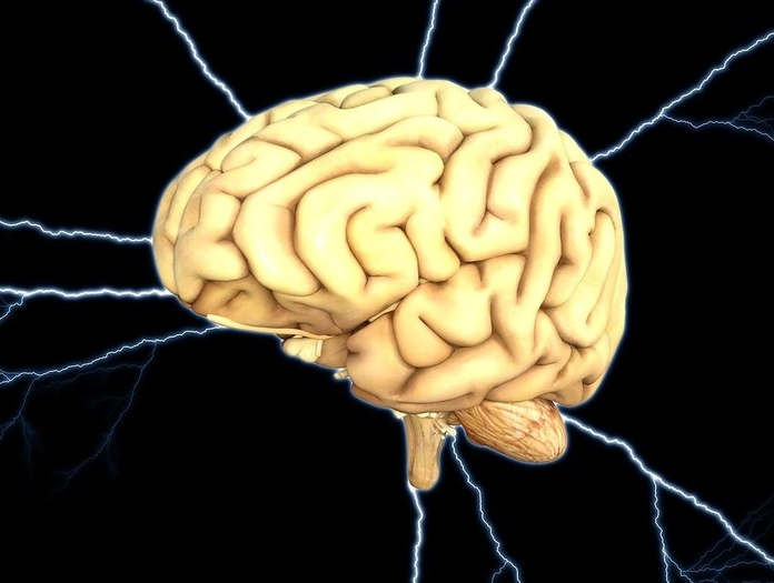Reorganización Neurofuncional: Servicios de Magnòlia