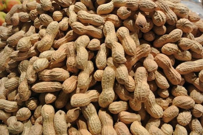 CACAHUET JUMBO KELIA 5 kg.: Productos  de Ismael González, S.L.