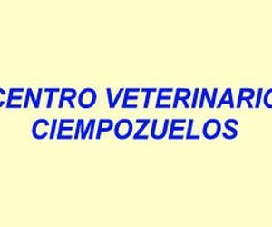 Galería de Veterinarios en Ciempozuelos   Centro Veterinario Ciempozuelos
