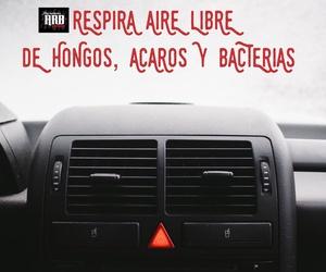Limpieza y desinfección del circuito de climatización de interior vehículo