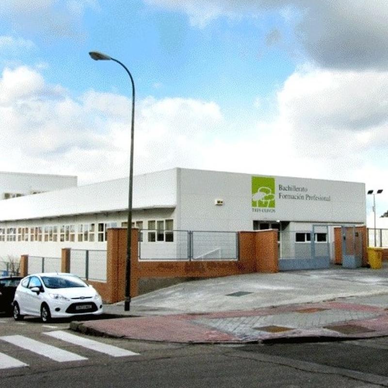 Formación Profesional: Educación y Servicios de Colegio Tres Olivos