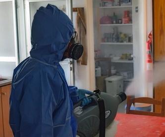 Limpieza de acumuladores de agua potable y aljibes: Servicios de Exterplagas