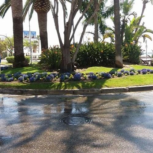 Manteniment de jardins públics a Cambrils