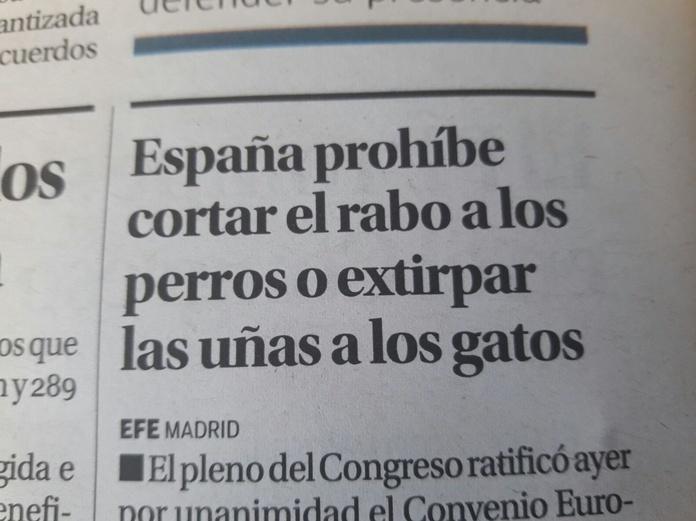 España prohíbe cortar el rabo a los perros o extirpar las uñas a los gatos
