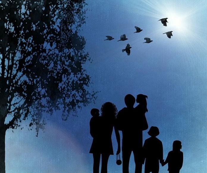 Constelaciones familiares: Servicios de Óptica Selgas
