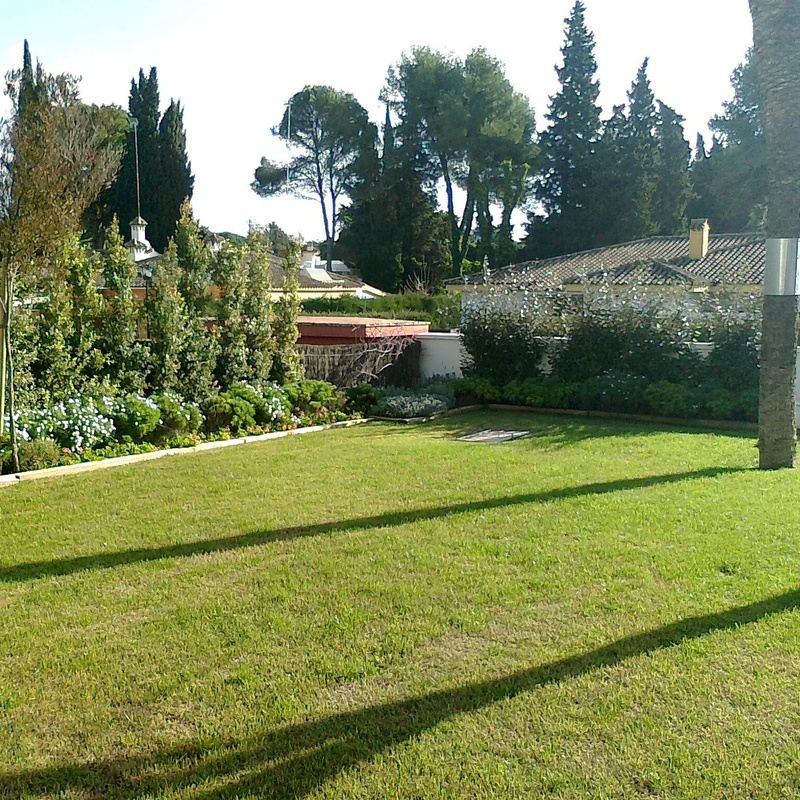 Mantenimiento de jardines: Servicios de Indigo Jardines