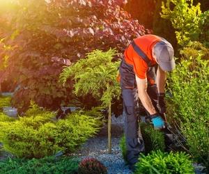 Jardinería y limpiezas en general