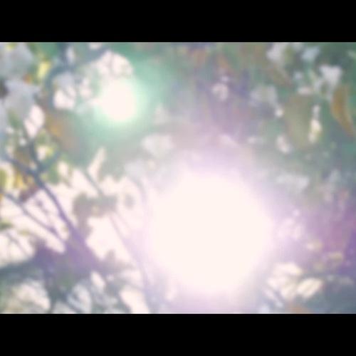 Trailer K&J