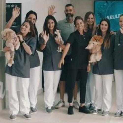 Cirugía veterinaria Tenerife