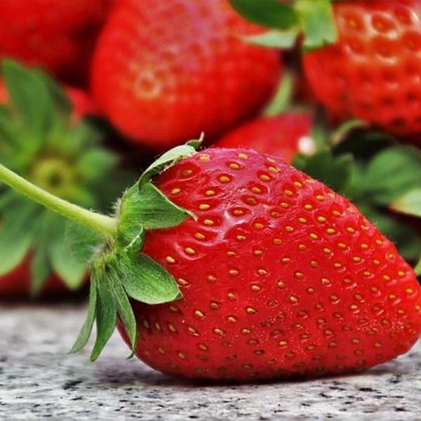 Conoce algunos alimentos beneficiosos para tu dentadura