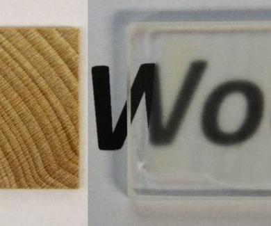 Parece de cristal, pero es madera transparente: más resistente que el vidrio - Gizmodo ES