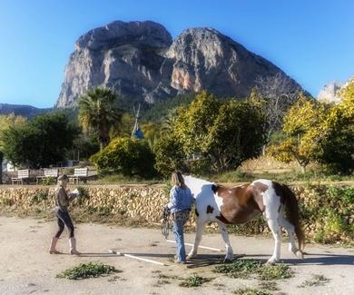 NaturCoaching y Coaching con Caballos
