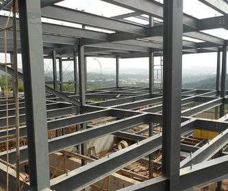 Carpintería metálica: Trabajos de Udasa