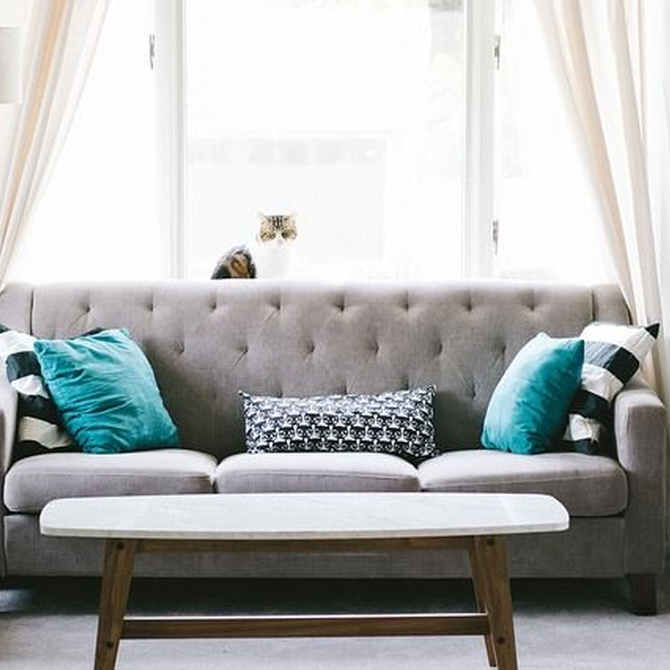 Dale vida a tu viejo sofá con un cambio de imagen