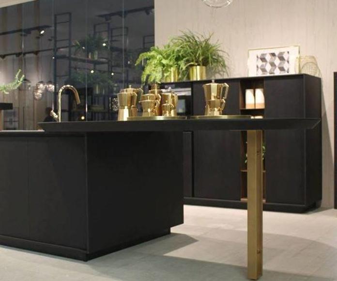 Diseño : Colecciones de Área Estudio Cocinas