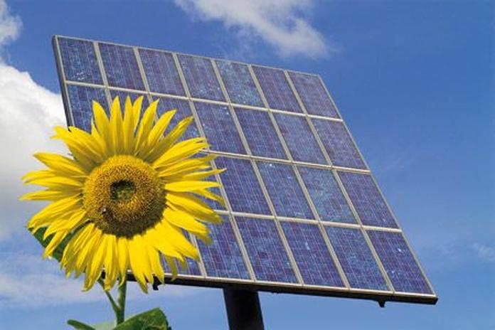 Energías renovables: Servicios de Pedro Miras Electricidad