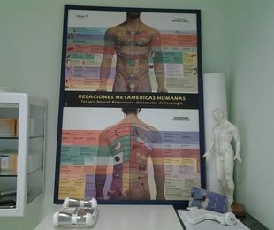 Homeosiniatría y Biopuntura