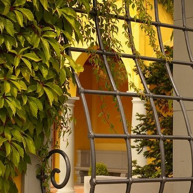 Cinco tipos de rejas de metal para ventanas