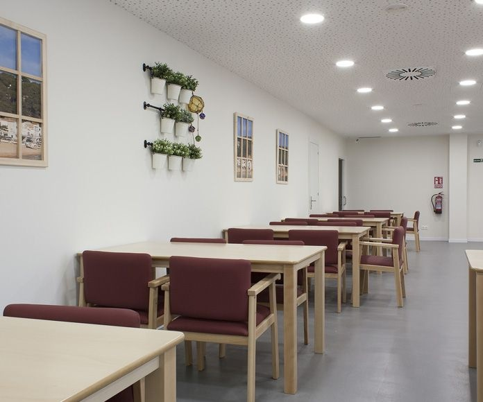 Servicio de comedor: Servicios de Avi Jeis Centro de dia para personas mayores