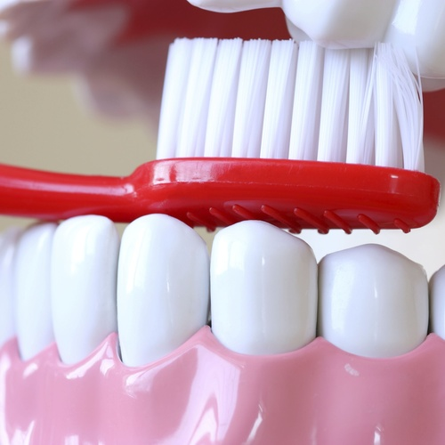 Asesoramiento en higiene dental