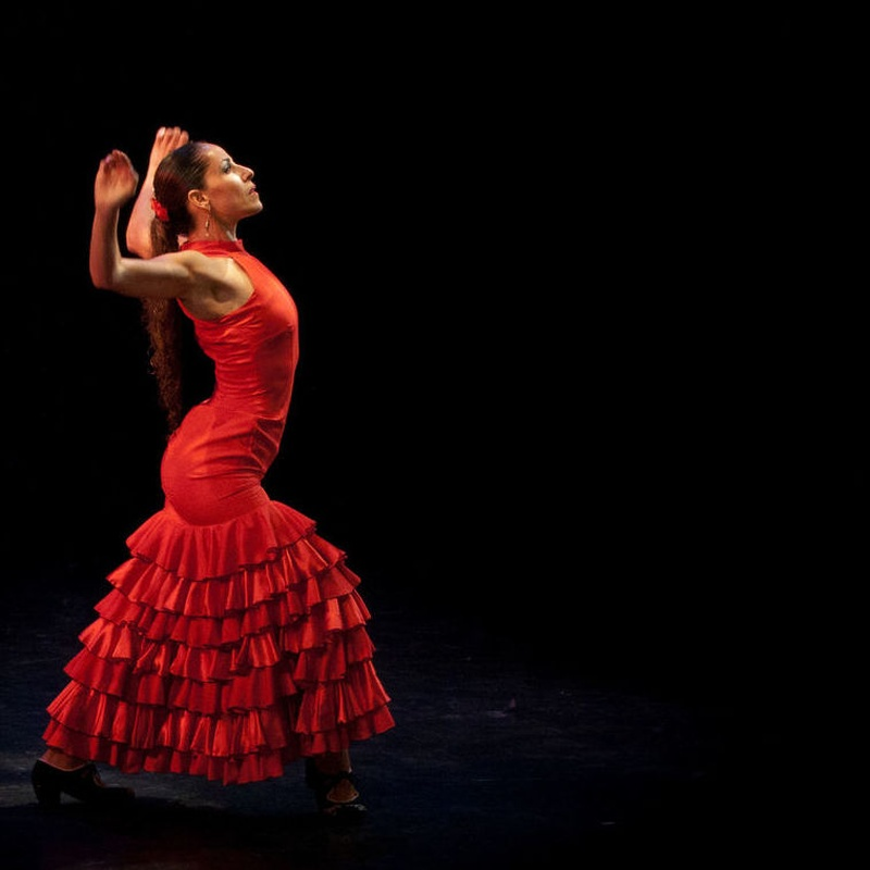 Flamenco iniciación:  Horarios y disciplinas de Estudio de Danza Stylo