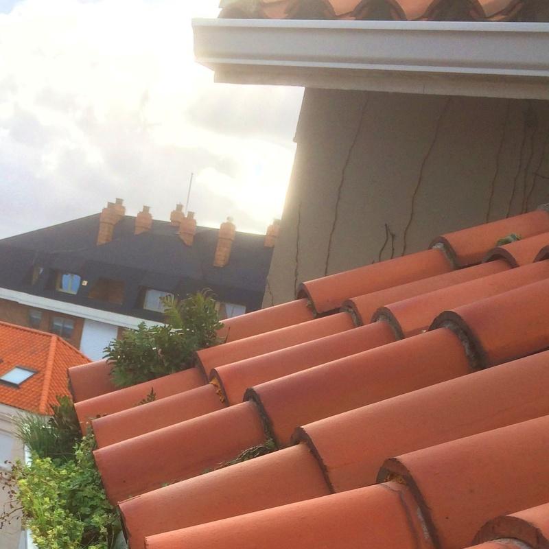 Limpieza y desinfección de tejados y cubiertas