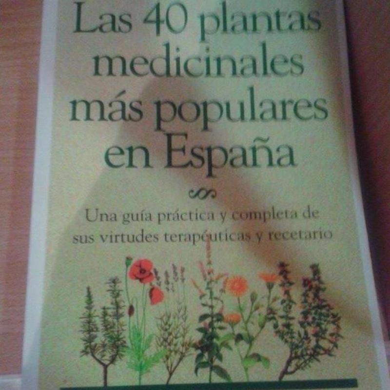 Las 40 plantas medicinales más populares en España: Cursos y productos de Racó Esoteric Font de mi Salut