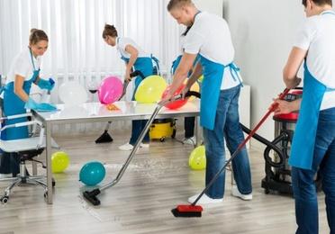 Limpieza especial