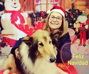 Postal navideña con su mascota - Navidades 2019
