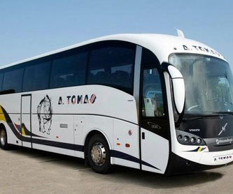 Rutas turísticas: Servicios de Autobuses A. Tomás