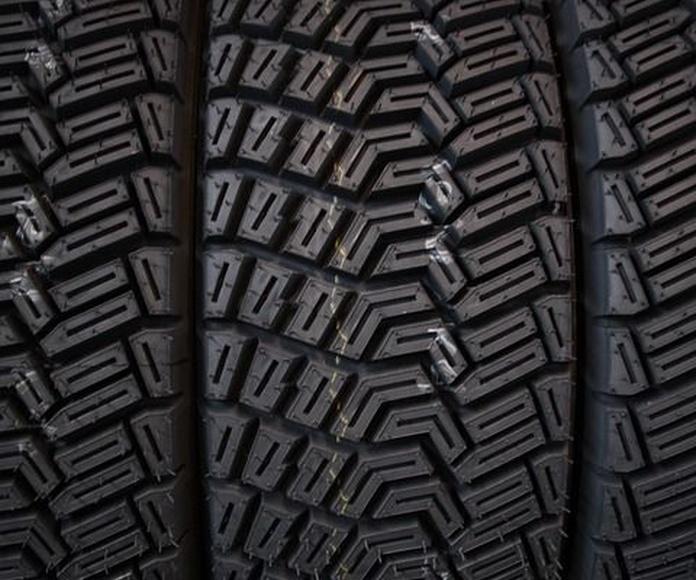 Distribuidor neumaticos Pirelli: Servicios de Talleres Bayona