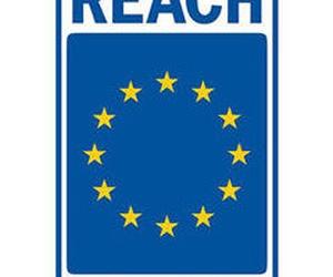 REACH (Regularización de la CE 1907/2006 sobre productos químicos)